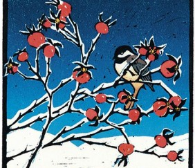 079 Chickadee on Rosehips &#8211; Cards