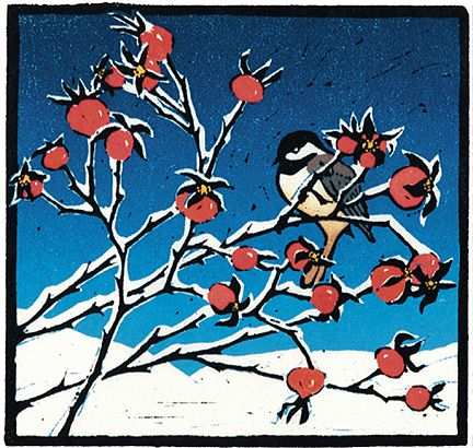 079 Chickadee on Rosehips – Matted Card