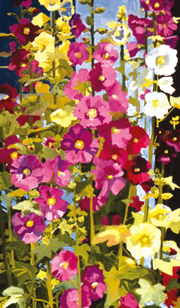 307 Hollyhocks – Matted Card