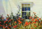 310 Southern Exposure – Matted Card