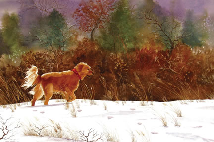 328 Golden in the Snow – Matted Card
