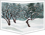 820 Apple Trees in Snow – Matted Wrapcard